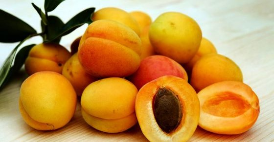 Is Apricot Good For Your Skin & Hair?