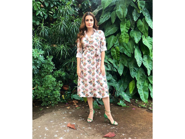 Dia Mirza fashion