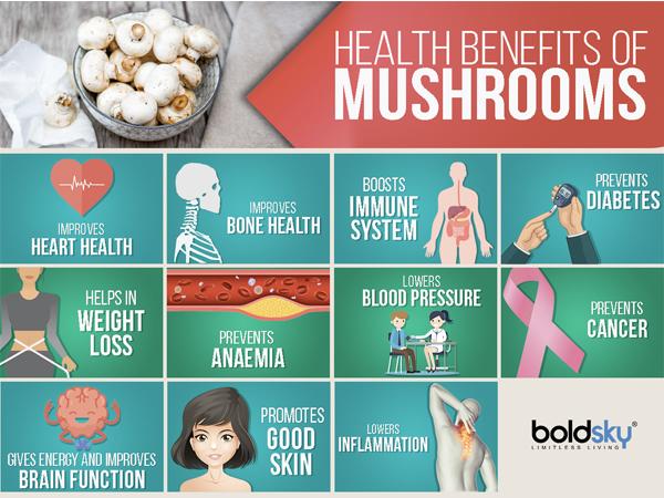 mushroom-1542180644.jpg