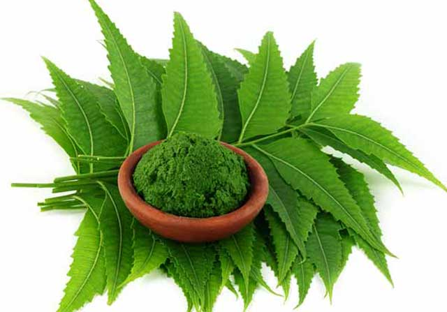 Get Rid Of Uneven Skin Tone At Home Using Neem Leaves Today!