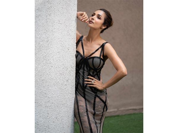 Malaika Arora Khans Bold Gown For Indias Got Talent Season 8 - Boldskycom-3579