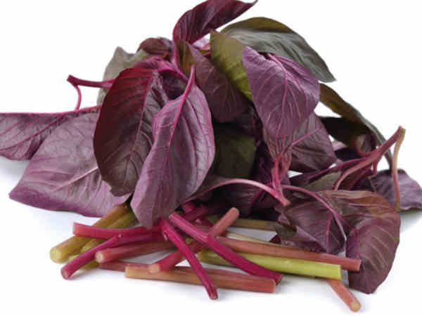 red spinach image