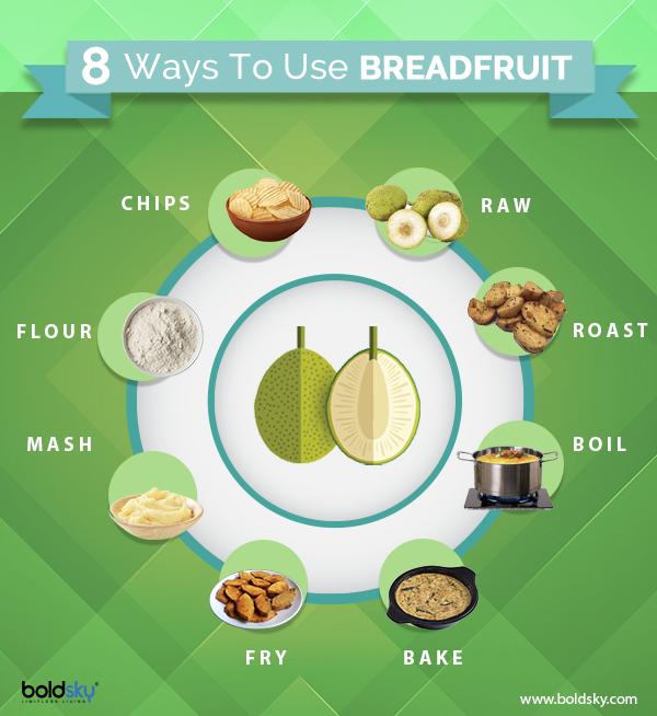 Breadfruit : Info- graphics