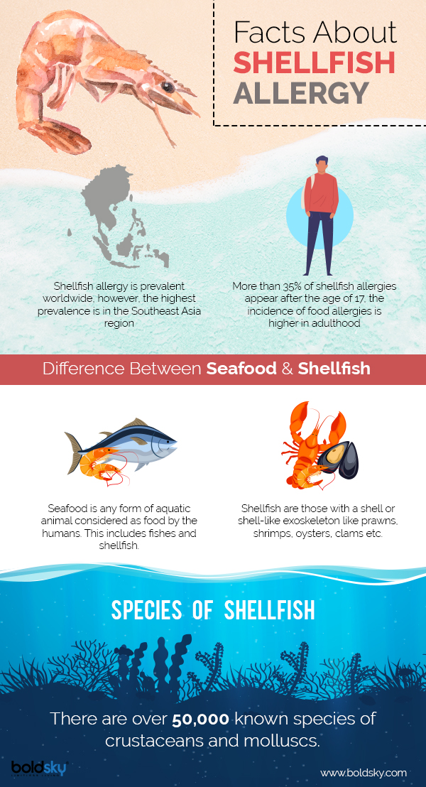 shellfish allergy symptoms infographic