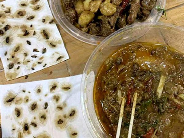 Puluhan kecoak mati ditemukan dalam makanan.