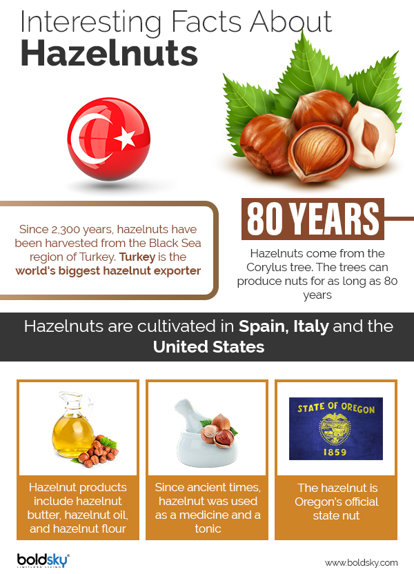 hazelnut benefits
