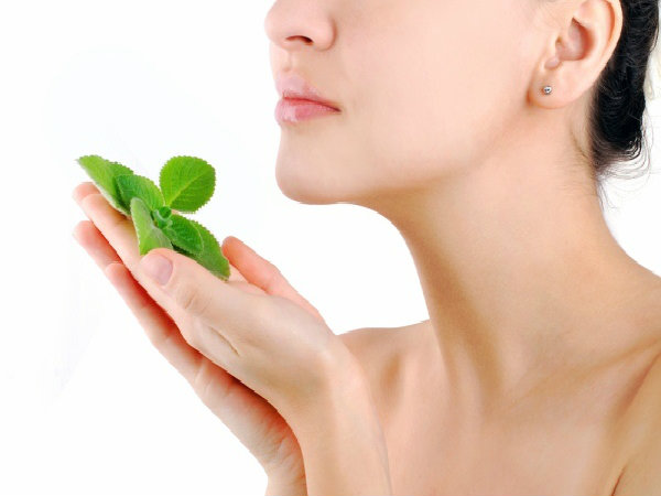 Benefits Of Mint For Skin And How To Use