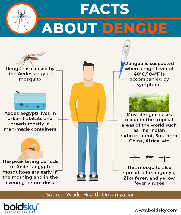 dengue causes infographic