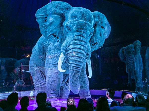 A Circus Uses 3D Hologram To Display Animal Stunts