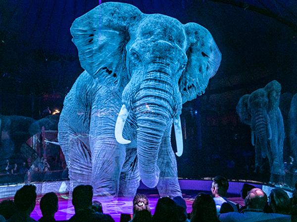 A Circus Uses 3D Hologram To Display Animal Stunts