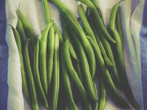 Green Beans: Health Benefits, Risks, & Recipes