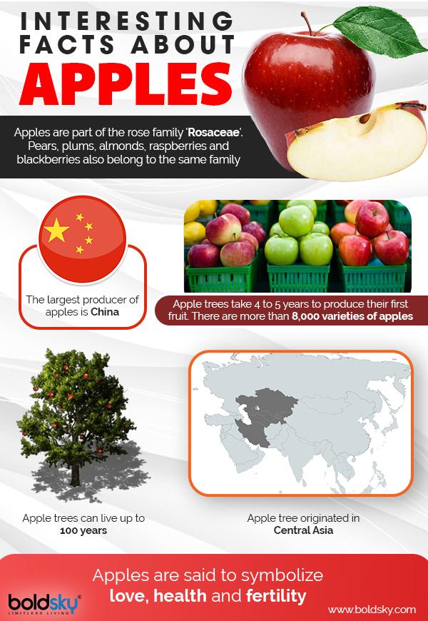Apples Health Benefits Risks Recipes Boldsky Com