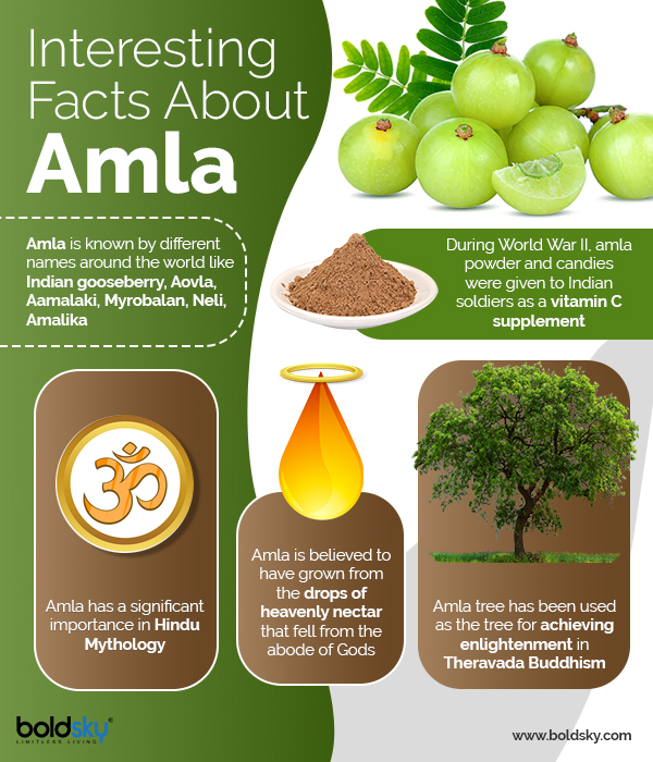 amla facts
