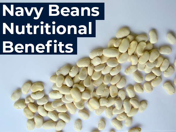 What Are Navy Beans? Their Benefits, Side Effects And Recipe