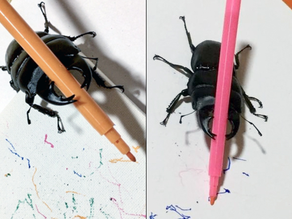 Beetles Paint