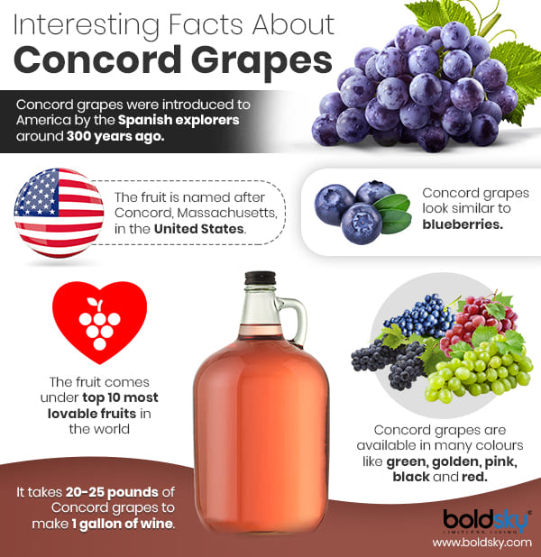 Health Benefits Of Concord Grapes