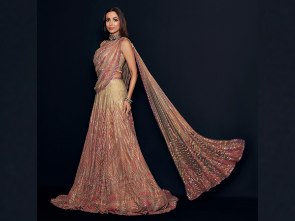 Malaika Arora Traditional Look