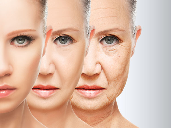 anti ageing creams
