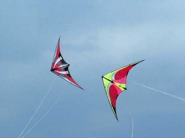 Facts About Kite Flying Festival