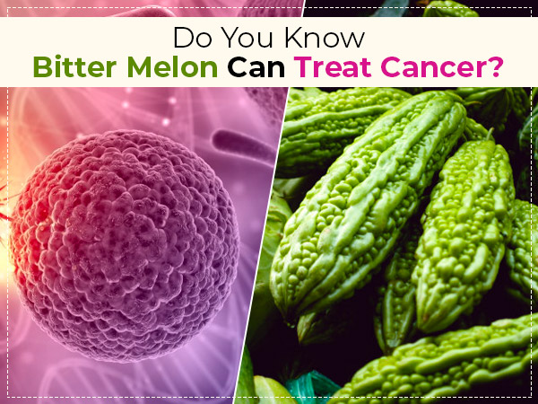 Bitter Melon Can Help Treat Cancer, As Per New Study