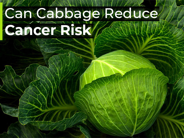 Studies Show Cabbage Can Reduce The Risk Of Certain Cancers