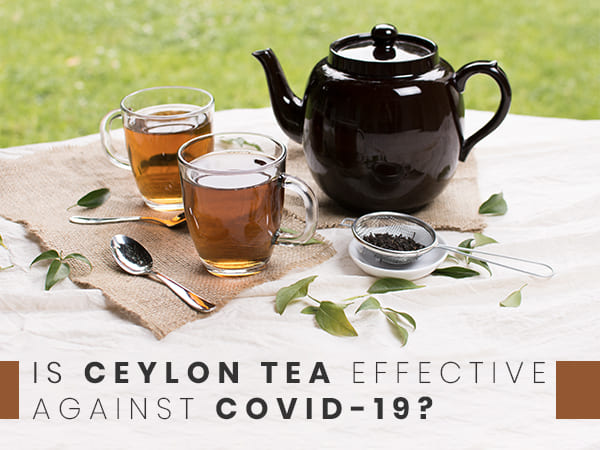 COVID-19: Ceylon Tea As Immunity Booster