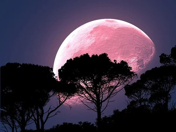 Pink Moon 2020: Know What It Is And When You Can Watch It In India