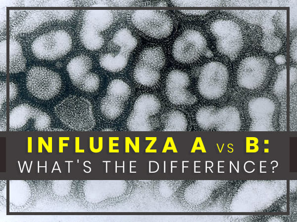 influenza a vs b differences