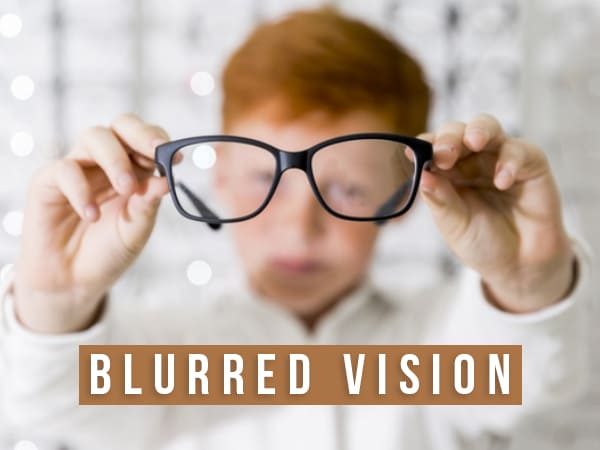 Blurred Vision: Causes, Symptoms, Diagnosis, Treatment And Prevention