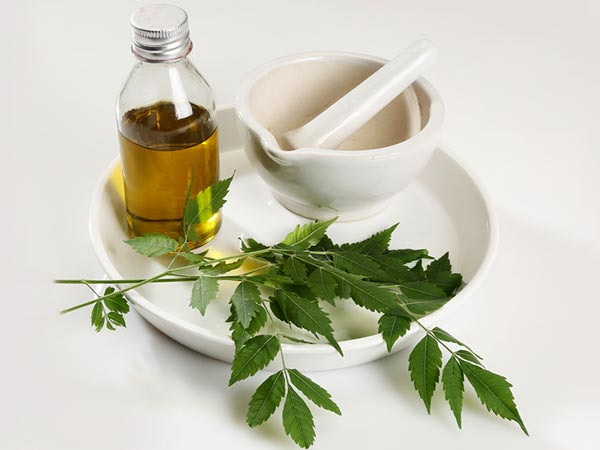5 Incredible Benefits Of Neem For Hair