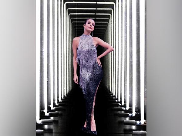 Malaika Arora In A Silver Sequin Dress