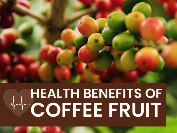What Is Coffee Fruit (Coffee Berry)? Its Health Benefits, Side Effects And Ways To Use