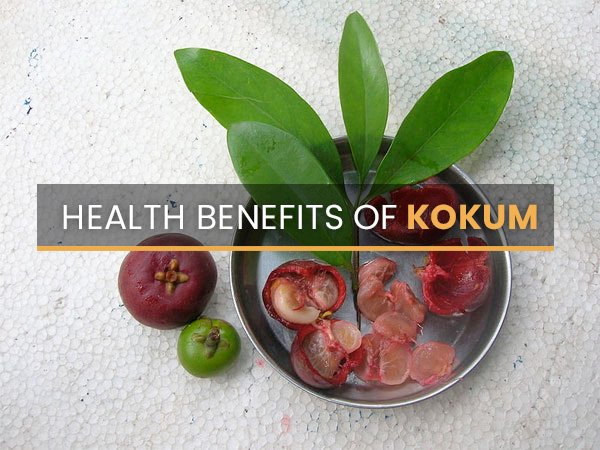 Uses And Benefits Of Kokum