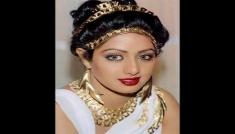 Sridevi's Costumes In Her Movie