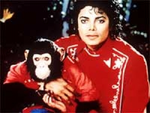 Pet Chimp Michael Jackson Bubbles