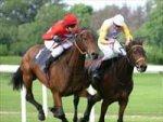 Rachel Alexandra Horse Year Award