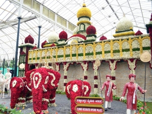 The Astounding Flower Show At Lalbagh 043937 Pg