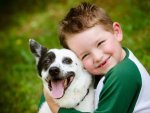 Nineteen Best And Safe Home Made Foods For Dogs