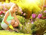 Time To Protect Your Garden This Summer
