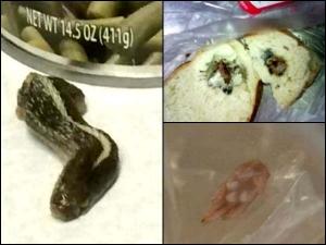 Ewww List Of Gross Things Found In Food