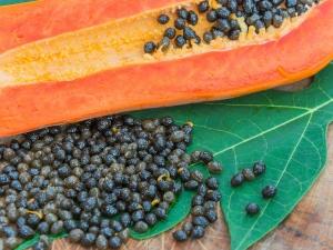 What Happens If You Eat Papaya Seeds