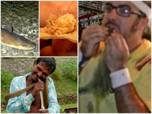 List Of Animals That Are Eaten Alive