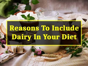 Reasons To Include Dairy Products In Your Diet