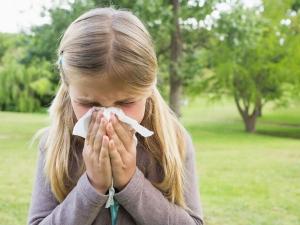 Reasons For Allergies In Kids