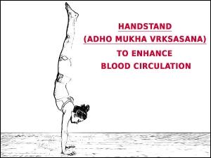 Adho Mukha Vrksasana Handstand To Enhance Blood Circulation