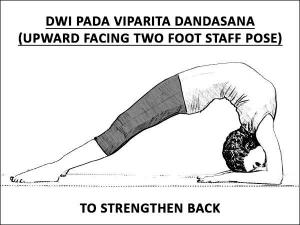 Dwi Pada Viparita Dandasana Upward Facing Two Foot Staff Pose To Stren