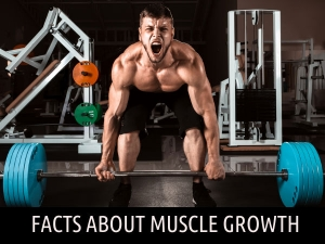 What You Need To Know About Muscle Gain