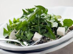 Top Seven Health Benefits Of Dandelion Root