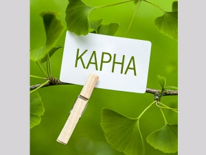 Ayurvedic Herbs For Kapha Dosha Balance