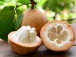 Health Benefits Of Cotton Fruit